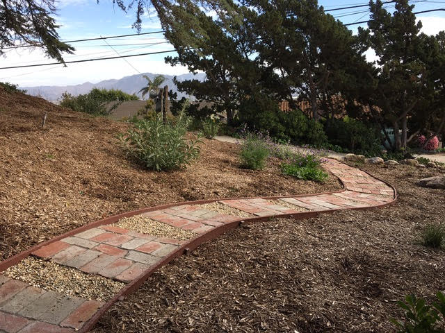 Lawns To Habitat After
